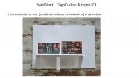 Tiago Ducloux Buttignol